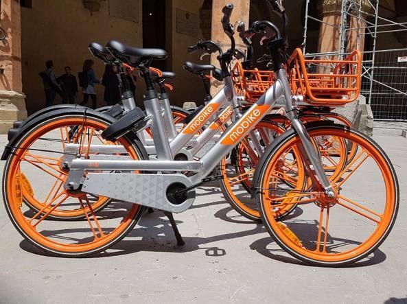 Alla scoperta di Bologna in sella ad una bicicletta